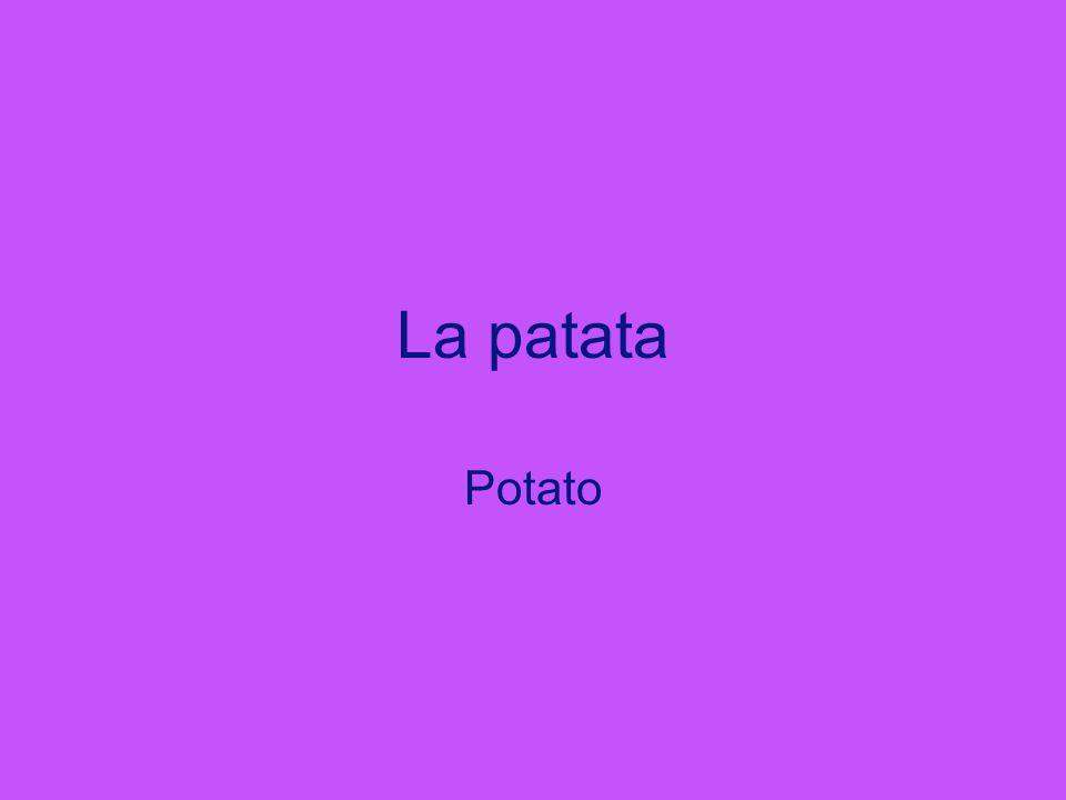 La patata Potato