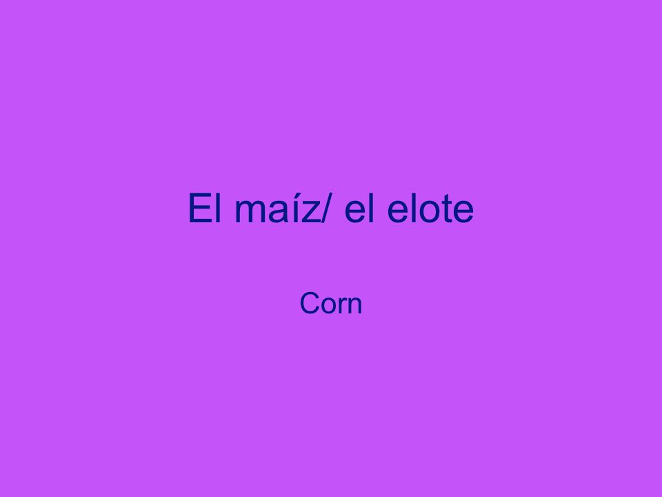 El maíz/ el elote Corn