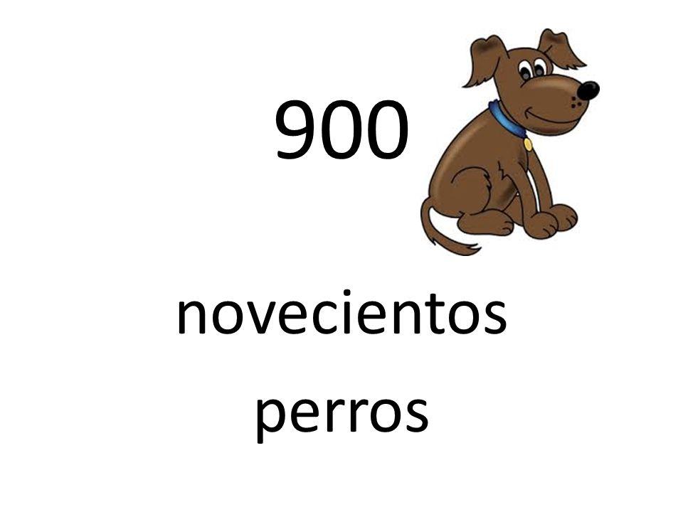 900 novecientos perros