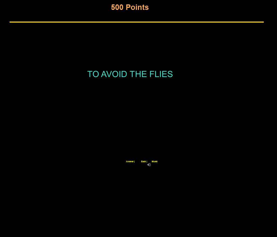 500 Points Back |Answer |Music TO AVOID THE FLIES
