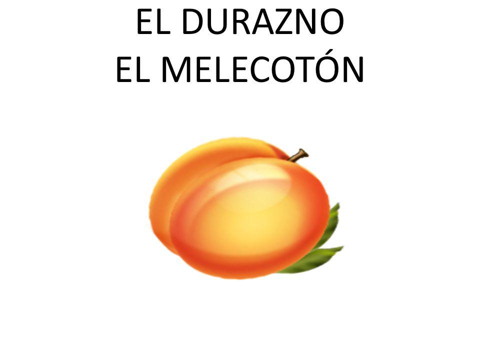 EL DURAZNO EL MELECOTÓN