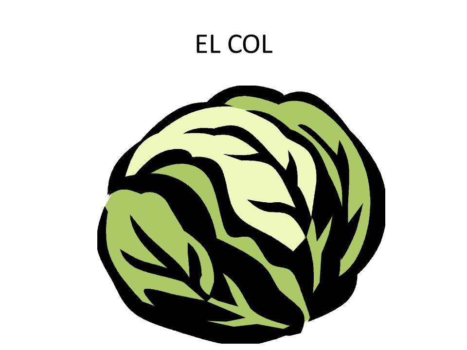 EL COL