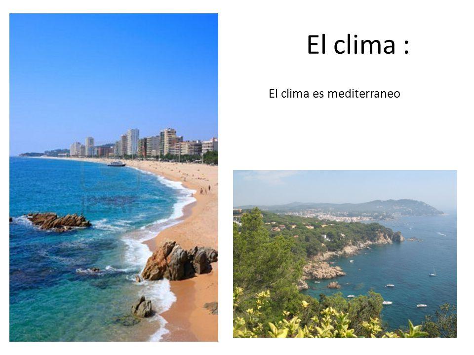 El clima : El clima es mediterraneo