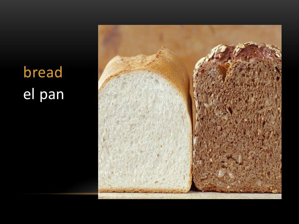 bread el pan