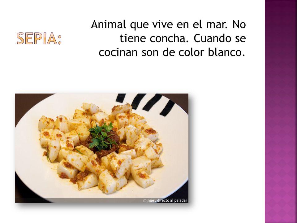 Animal que vive en el mar. No tiene concha. Cuando se cocinan son de color blanco.