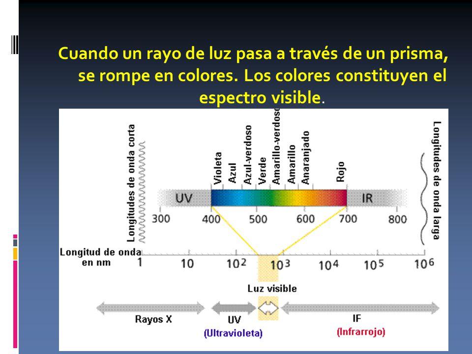 Cuando un rayo de luz pasa a través de un prisma, se rompe en colores.