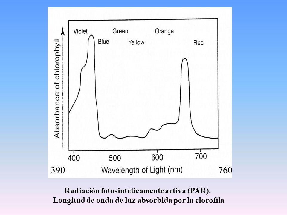 Características de la luz visible  Calidad.