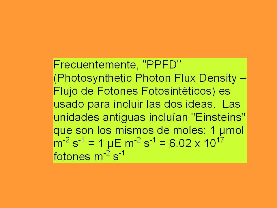 La energía solar que llega cada año a la atmósfera equivale aproximadamente a 520 x 10 22 Kj Según la ley de Einstein de equivalencia fotoquímica,una molécula reaccionara solo después de haber absorvido un foton de energía (hv).