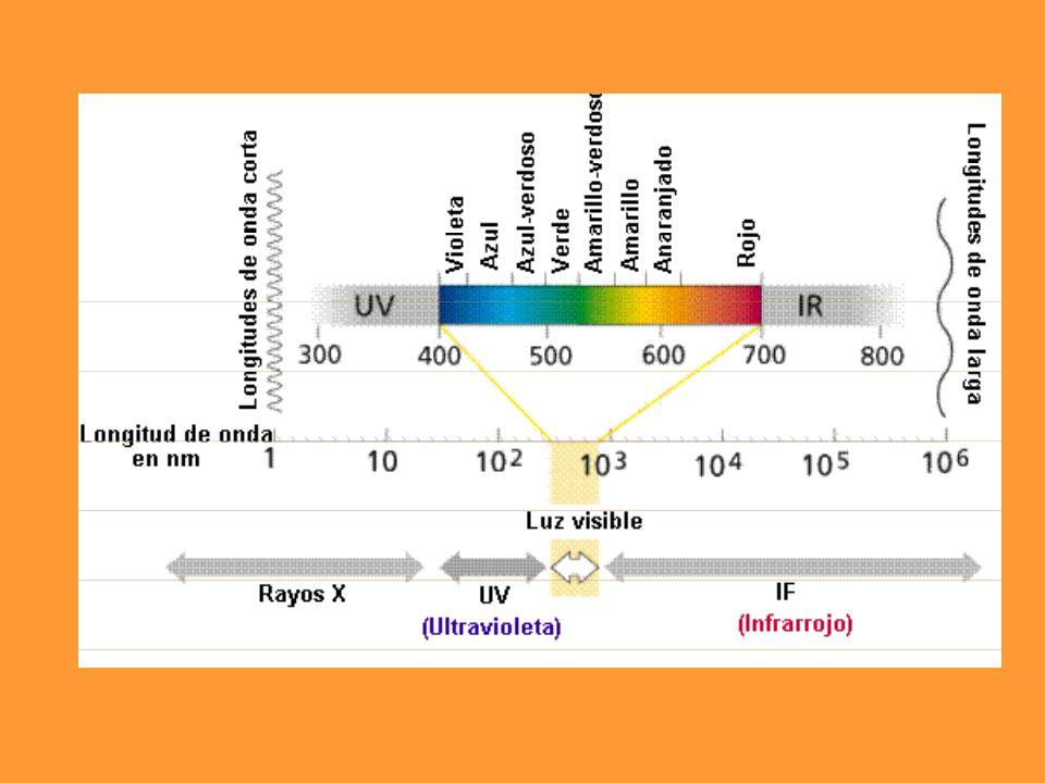 6 CO 2 + 6 H 2 O + Energía luminosa =(con clorofila)==> C 6 H 12 O 6 + 6 O 2.