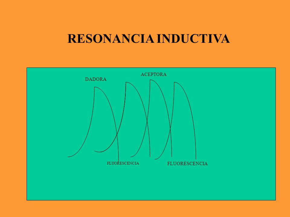La energía de excitación de la molécula del dador es transferida por resonancia a la molécula del aceptor.