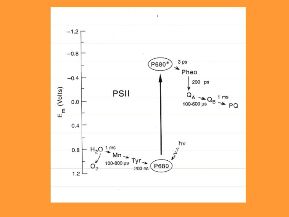 La energía de los fotones puede expresarse en electrón volts (eV) el cual es igual a la energía que necesita un electrón cuando pasa a través de un potencial de un volt y ello equivale a 1.6 x 10 -19 J.