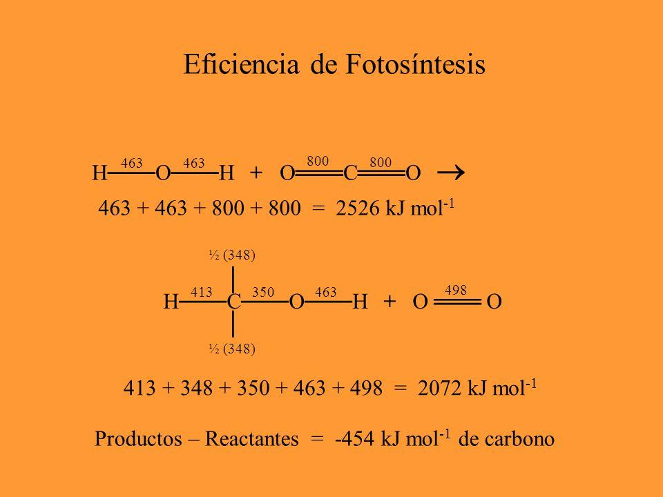 Eficiencia de Fotosíntesis Productos – Reactantes = -454 kJ mol -1 de carbono 8 fotones de luz, = 680 nm (rojo) Formula para calcular la energia en luz: E = h c / Donde h = el Constante de Planck = 6.626  10 -34 J s -1 c = velocidad de luz = 3.0  10 8 m s -1