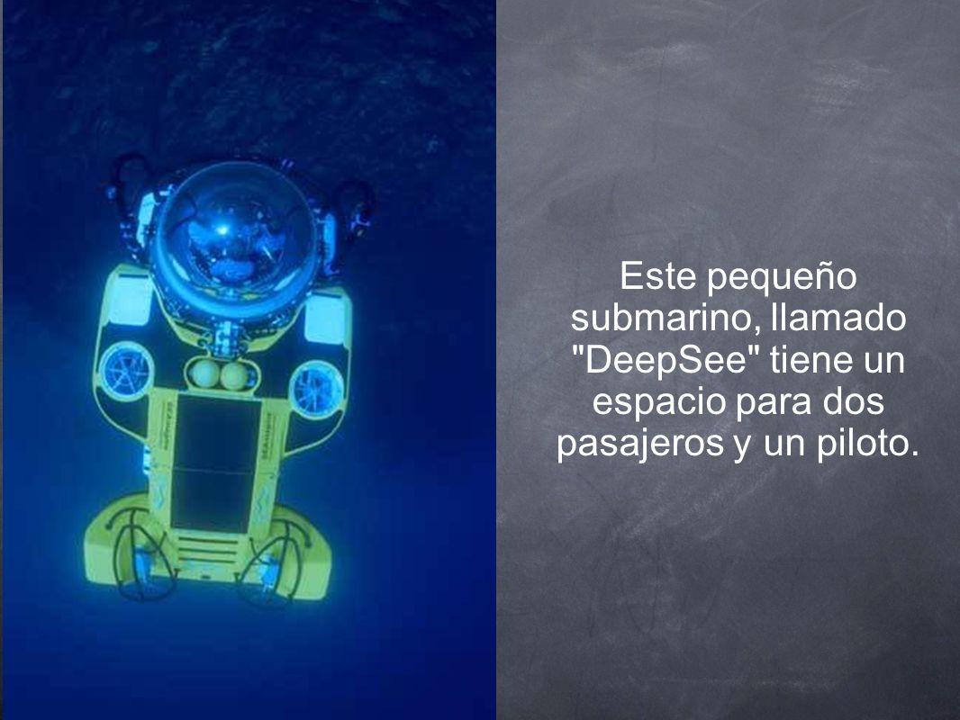 Este pequeño submarino, llamado DeepSee tiene un espacio para dos pasajeros y un piloto.