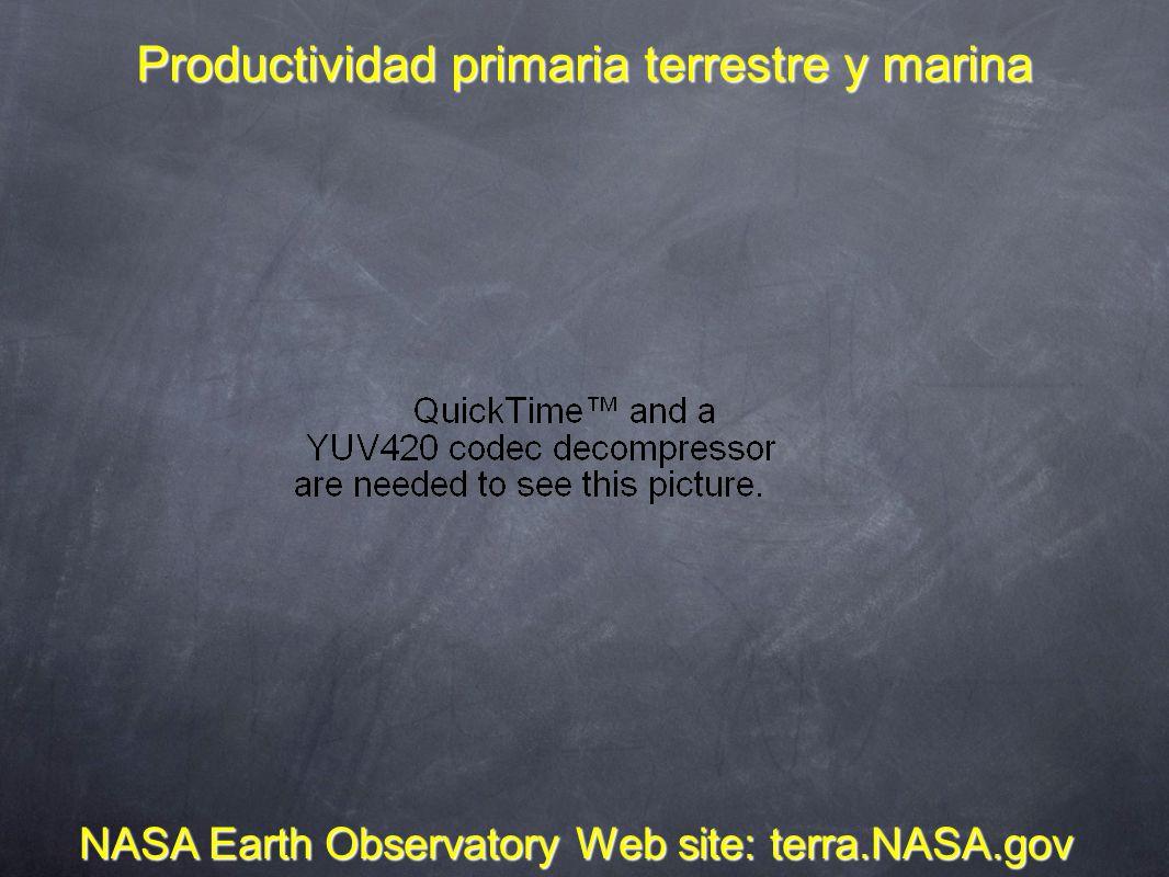 Productividad primaria terrestre y marina NASA Earth Observatory Web site: terra.NASA.gov