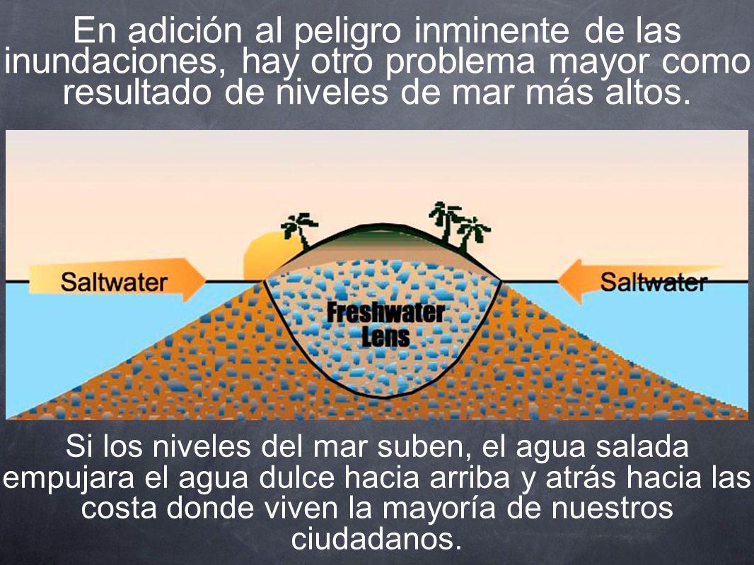 En adición al peligro inminente de las inundaciones, hay otro problema mayor como resultado de niveles de mar más altos.