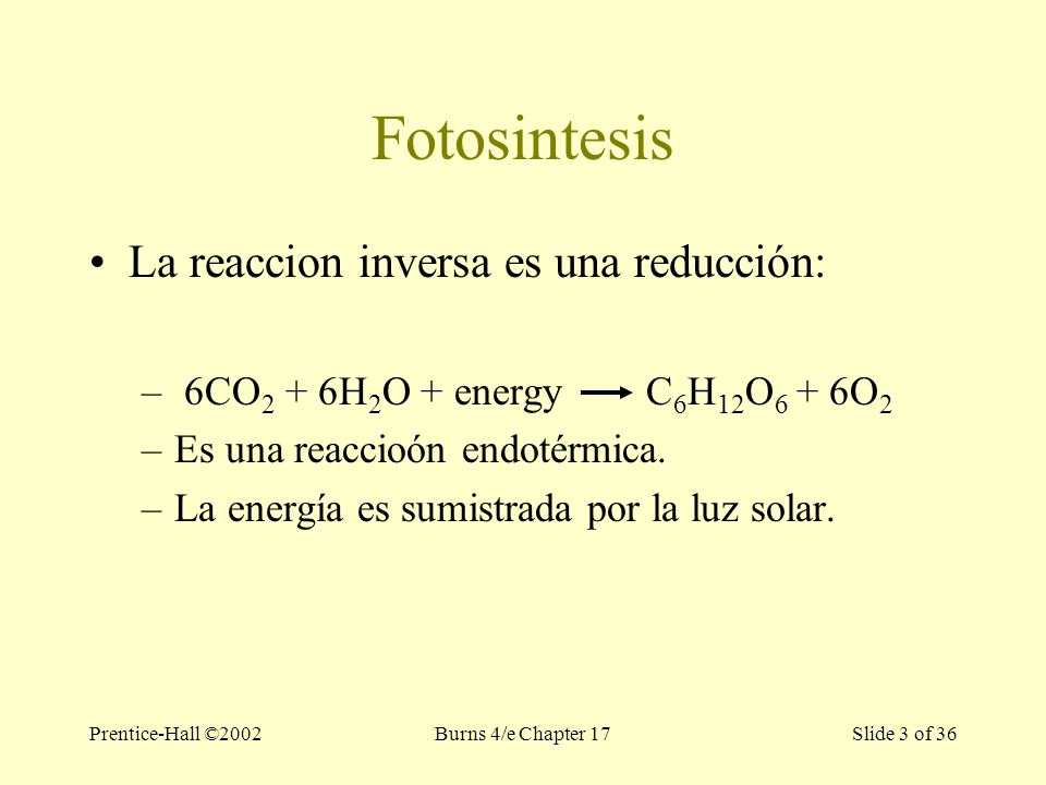 Prentice-Hall ©2002Burns 4/e Chapter 17 Slide 3 of 36 Fotosintesis La reaccion inversa es una reducción: – 6CO 2 + 6H 2 O + energy C 6 H 12 O 6 + 6O 2 –Es una reaccioón endotérmica.