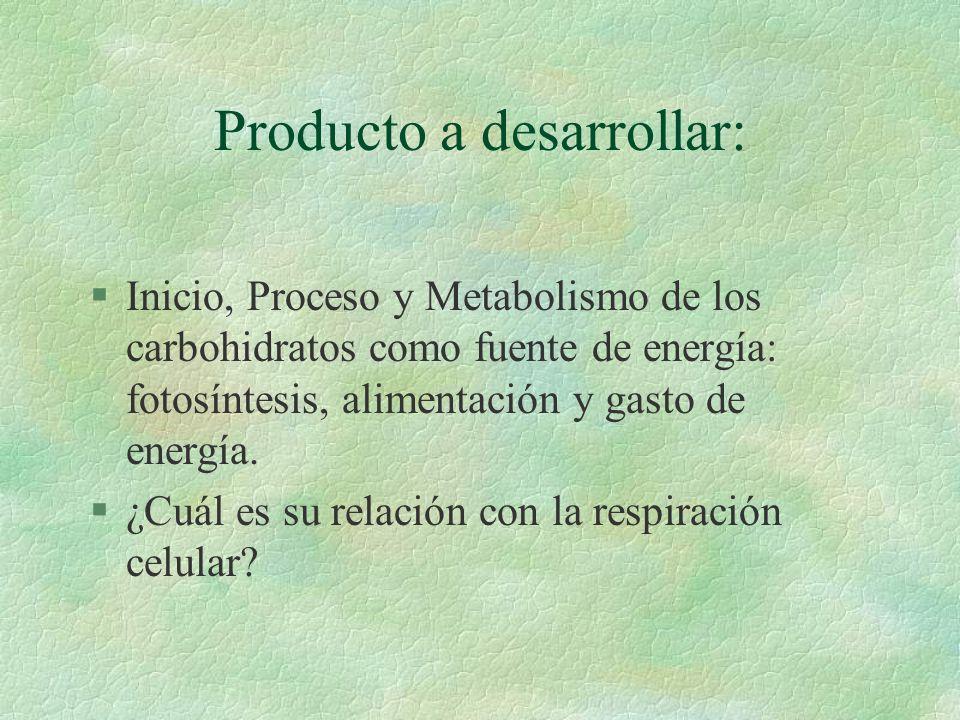 División de carbohidratos: §Monosacáridos §Disacáridos §polisacáridos