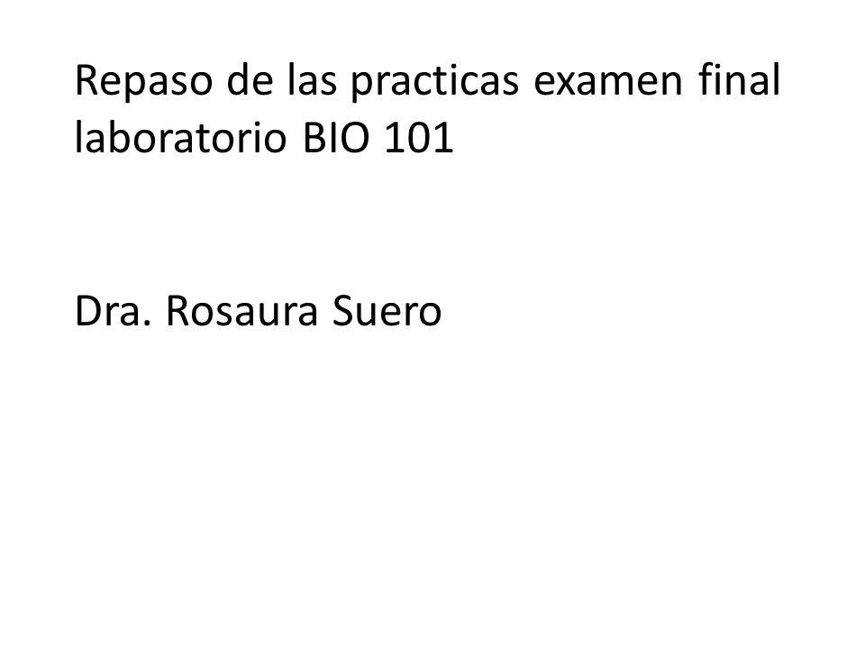Repaso de las practicas examen final laboratorio BIO 101 Dra. Rosaura Suero