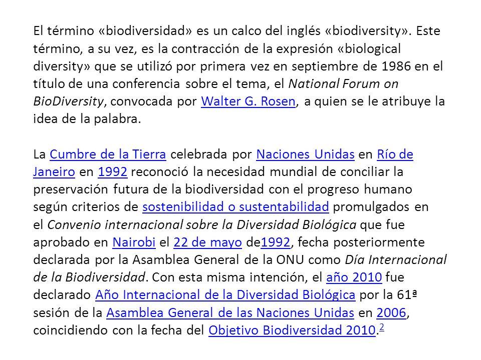 El término «biodiversidad» es un calco del inglés «biodiversity».