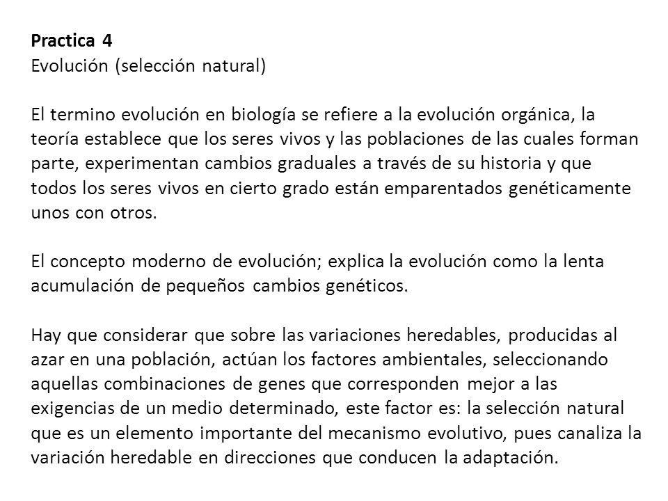 Practica 4 Evolución (selección natural) El termino evolución en biología se refiere a la evolución orgánica, la teoría establece que los seres vivos y las poblaciones de las cuales forman parte, experimentan cambios graduales a través de su historia y que todos los seres vivos en cierto grado están emparentados genéticamente unos con otros.
