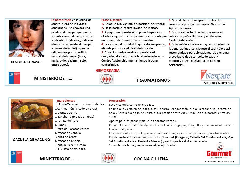 MINISTERIO DE …… COCINA CHILENA HEMORRAGIA Publicidad Educativa M.R.