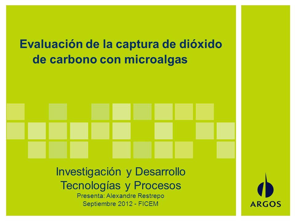 Análisis de la idea - titulo de la idea 1 Evaluación de la captura de dióxido de carbono con microalgas Investigación y Desarrollo Tecnologías y Procesos Presenta: Alexandre Restrepo Septiembre 2012 - FICEM