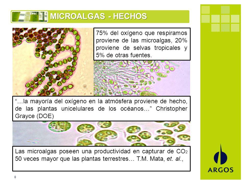 8 MICROALGAS - HECHOS 75% del oxígeno que respiramos proviene de las microalgas, 20% proviene de selvas tropicales y 5% de otras fuentes.