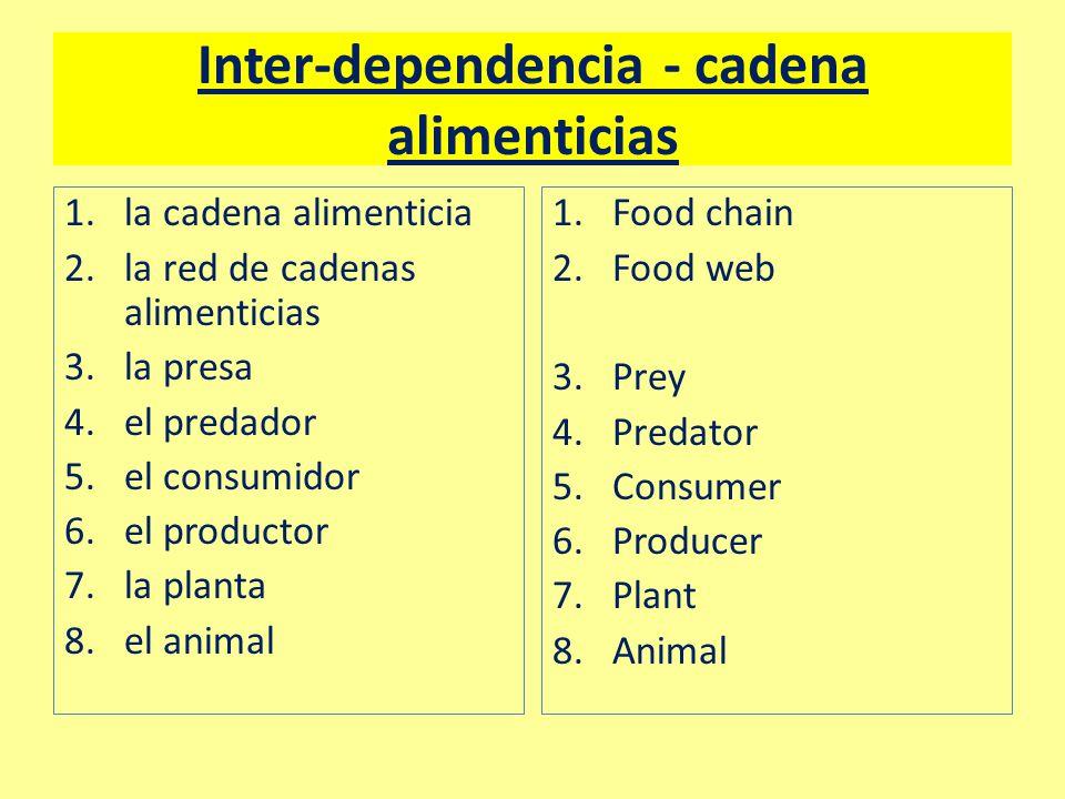 Inter-dependencia - cadena alimenticias 1.la cadena alimenticia 2.la red de cadenas alimenticias 3.la presa 4.el predador 5.el consumidor 6.el productor 7.la planta 8.el animal 1.Food chain 2.Food web 3.Prey 4.Predator 5.Consumer 6.Producer 7.Plant 8.Animal