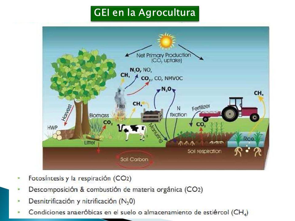 GEI en la Agrocultura