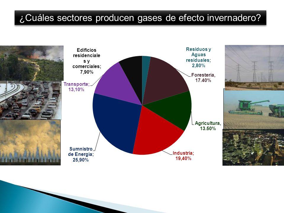 ¿Cuáles sectores producen gases de efecto invernadero