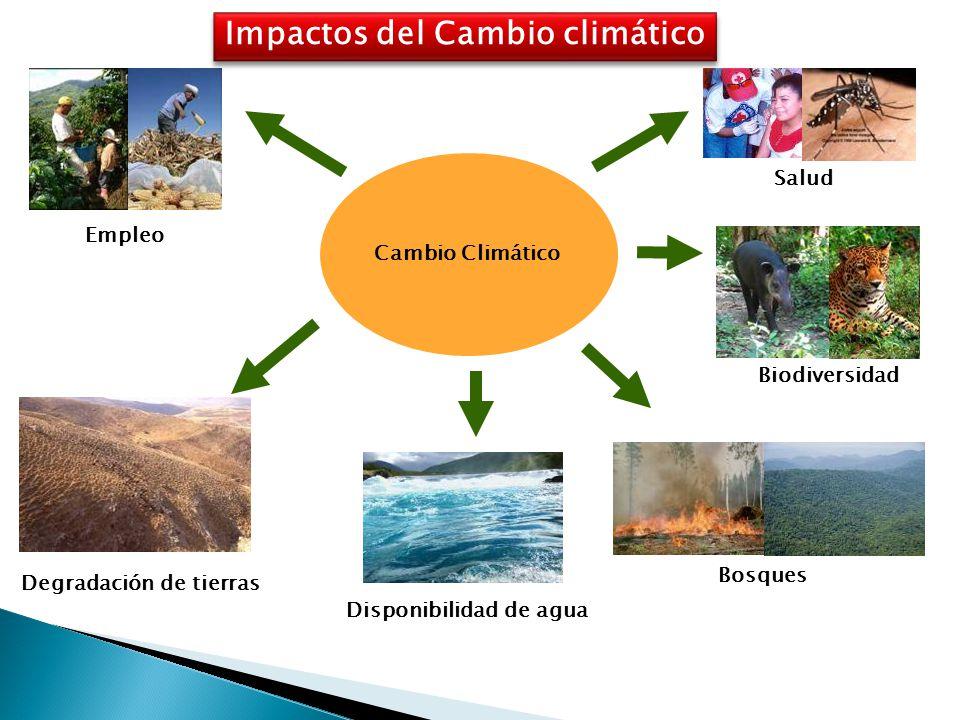 Salud Biodiversidad Bosques Disponibilidad de agua Degradación de tierras Empleo Cambio Climático Impactos del Cambio climático