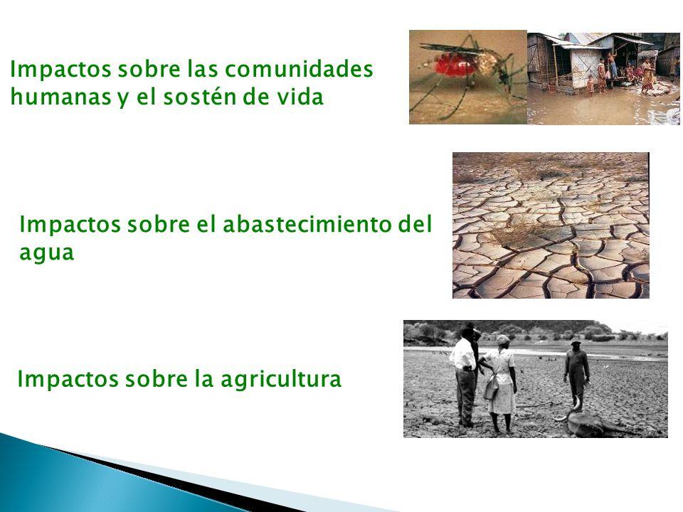 Impactos sobre las comunidades humanas y el sostén de vida Impactos sobre el abastecimiento del agua Impactos sobre la agricultura