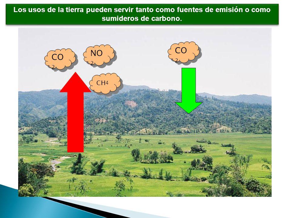 CO 2 NO 2 CH 4 Los usos de la tierra pueden servir tanto como fuentes de emisión o como sumideros de carbono.