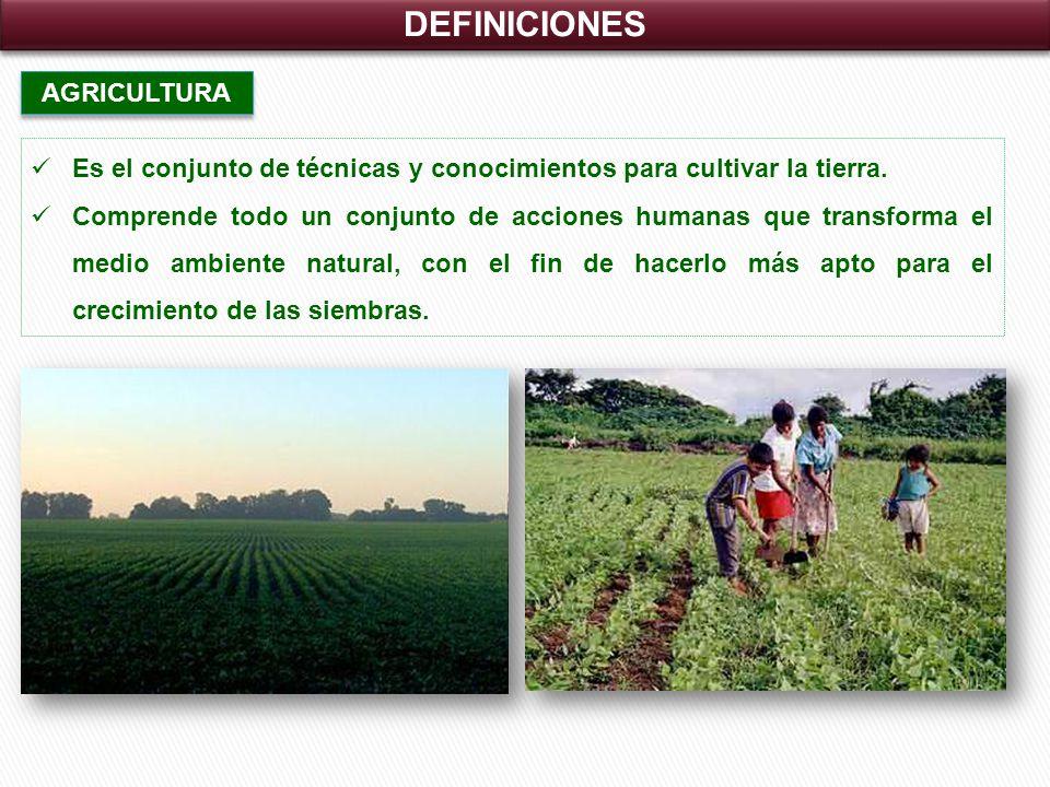DEFINICIONES AGRICULTURA Es el conjunto de técnicas y conocimientos para cultivar la tierra.