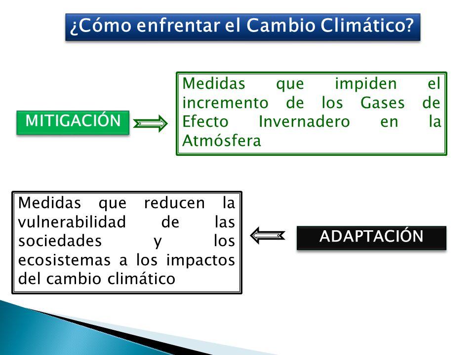 ¿Cómo enfrentar el Cambio Climático.