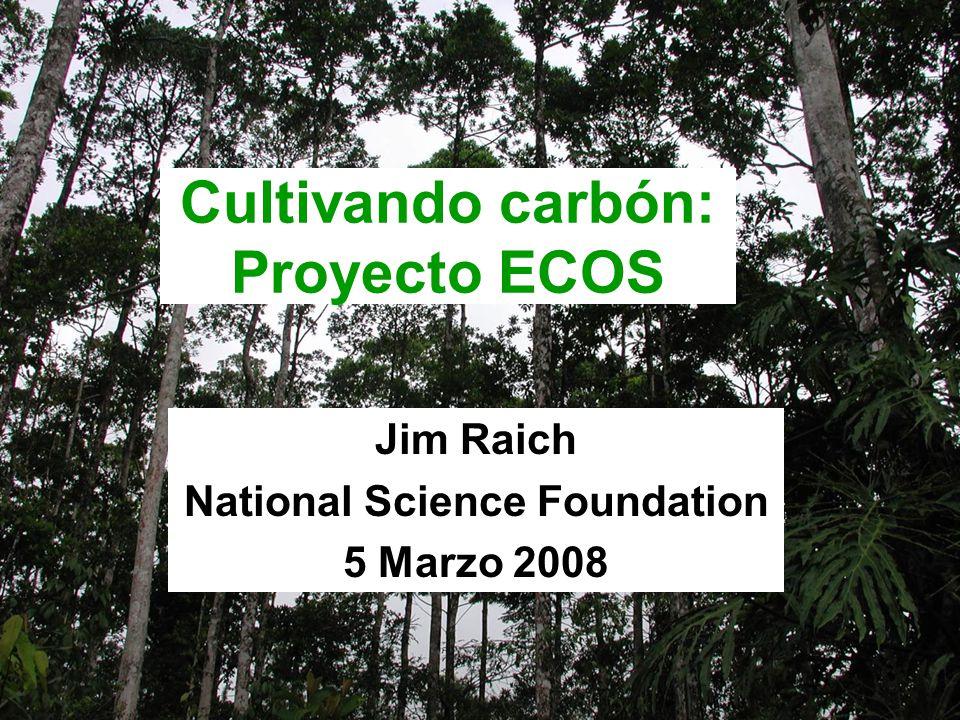 Cultivando carbón: Proyecto ECOS Jim Raich National Science Foundation 5 Marzo 2008