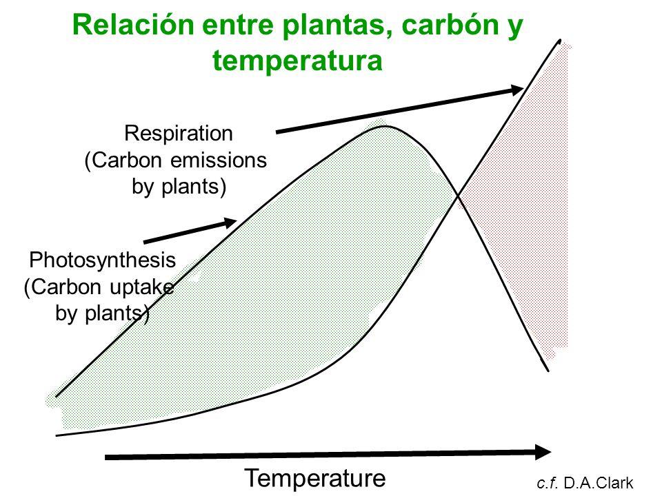 Relación entre plantas, carbón y temperatura Respiration (Carbon emissions by plants) Photosynthesis (Carbon uptake by plants) Temperature c.f.