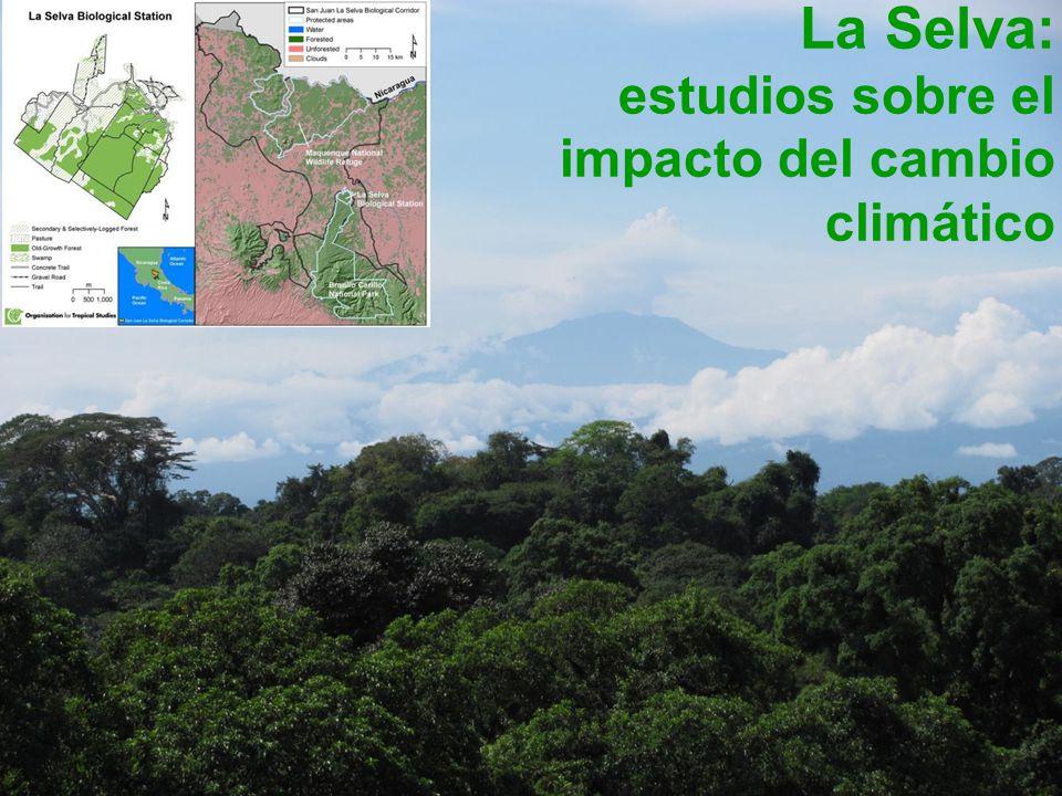 La Selva: estudios sobre el impacto del cambio climático