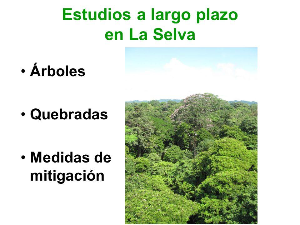 Estudios a largo plazo en La Selva Árboles Quebradas Medidas de mitigación