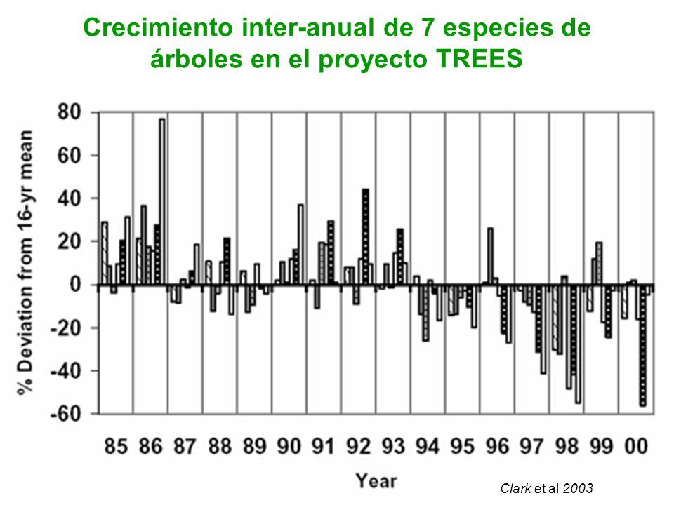 Crecimiento inter-anual de 7 especies de árboles en el proyecto TREES Clark et al 2003