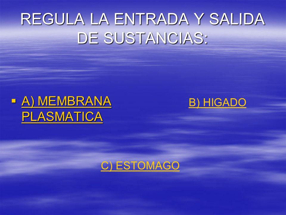 REGULA LA ENTRADA Y SALIDA DE SUSTANCIAS:  A) MEMBRANA PLASMATICA A) MEMBRANA PLASMATICA A) MEMBRANA PLASMATICA B) HIGADO C) ESTOMAGO