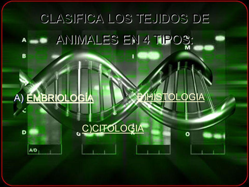 CLASIFICA LOS TEJIDOS DE ANIMALES EN 4 TIPOS: A) EMBRIOLOGÍA EMBRIOLOGÍA B)HISTOLOGIA C)CITOLOGIA