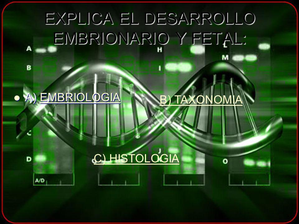 EXPLICA EL DESARROLLO EMBRIONARIO Y FETAL: A) EMBRIOLOGIA A) EMBRIOLOGIAEMBRIOLOGIA B) TAXONOMIA C) HISTOLOGIA