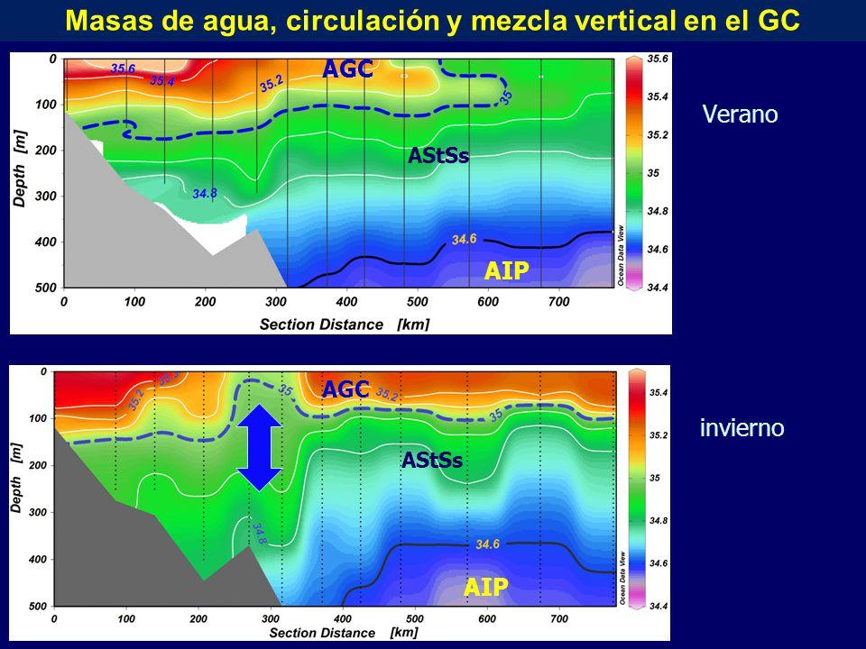 Verano AGC AStSs AIP invierno AGC AStSs AIP Masas de agua, circulación y mezcla vertical en el GC
