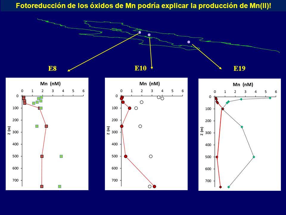 E8 E10 E19 Fotoreducción de los óxidos de Mn podría explicar la producción de Mn(II)!