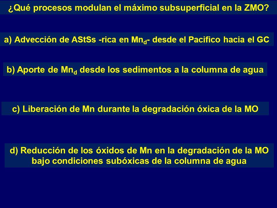 ¿Qué procesos modulan el máximo subsuperficial en la ZMO.