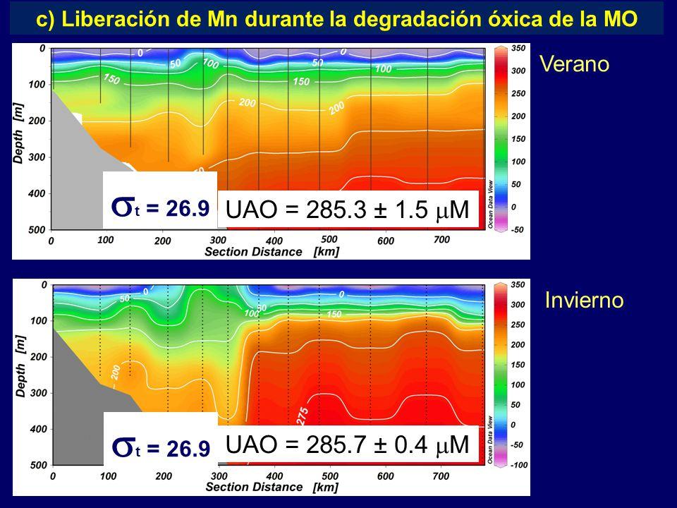 Verano Invierno c) Liberación de Mn durante la degradación óxica de la MO  t = 26.9 UAO = 285.3 ± 1.5  M UAO = 285.7 ± 0.4  M