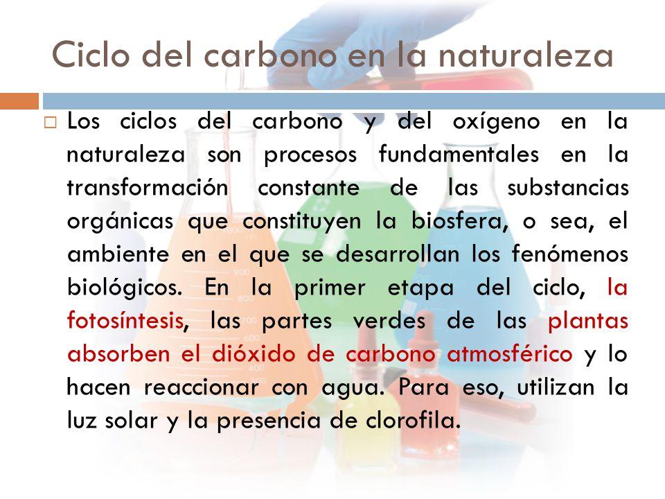 Ciclo del carbono en la naturaleza  Los ciclos del carbono y del oxígeno en la naturaleza son procesos fundamentales en la transformación constante de las substancias orgánicas que constituyen la biosfera, o sea, el ambiente en el que se desarrollan los fenómenos biológicos.