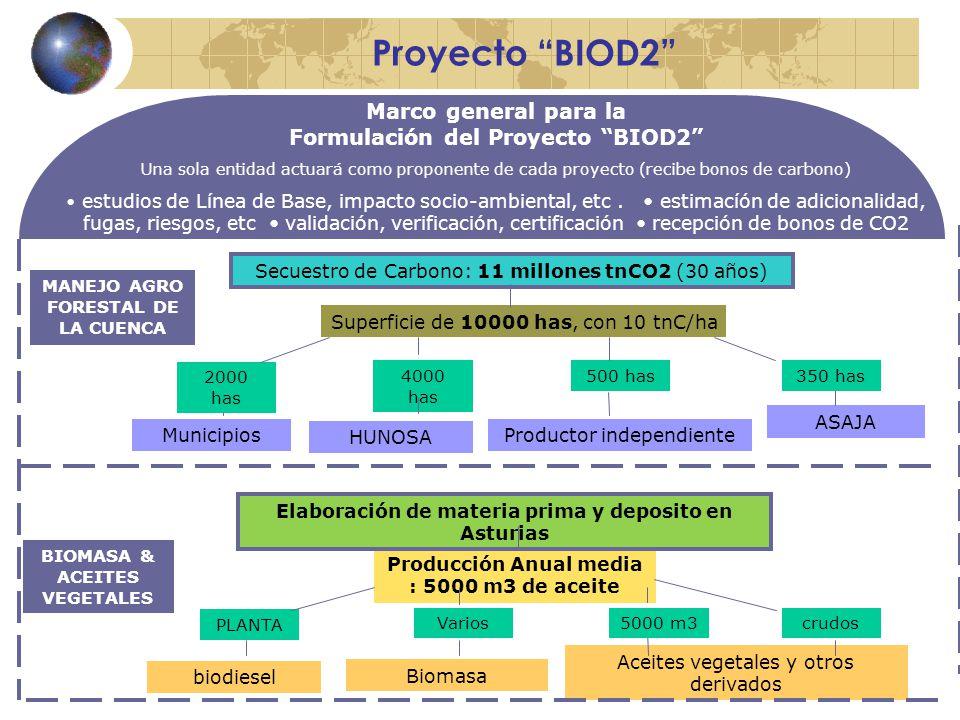 Proyecto BIOD2 Marco general para la Formulación del Proyecto BIOD2 Una sola entidad actuará como proponente de cada proyecto (recibe bonos de carbono) estudios de Línea de Base, impacto socio-ambiental, etc.
