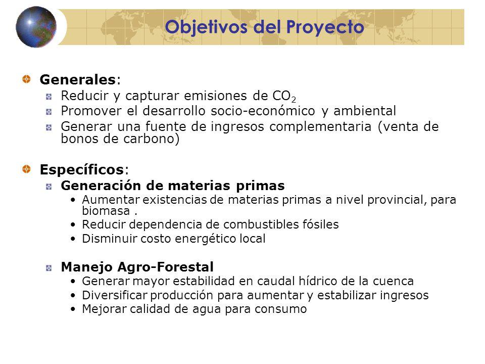 Objetivos del Proyecto Generales: Reducir y capturar emisiones de CO 2 Promover el desarrollo socio-económico y ambiental Generar una fuente de ingresos complementaria (venta de bonos de carbono) Específicos: Generación de materias primas Aumentar existencias de materias primas a nivel provincial, para biomasa.